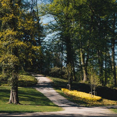 200423_hwag_park_highres-2