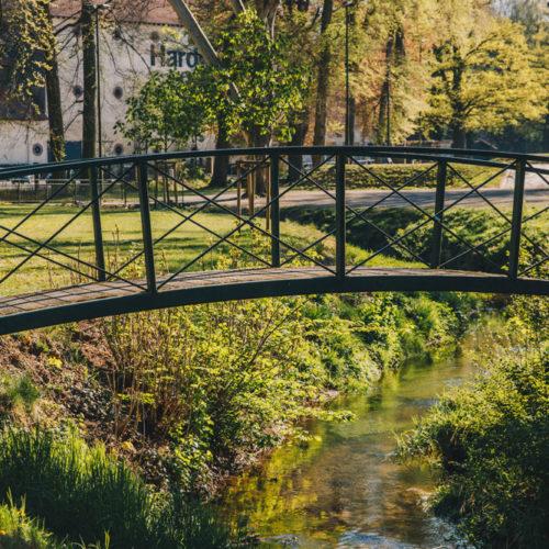 200423_hwag_park_highres-21
